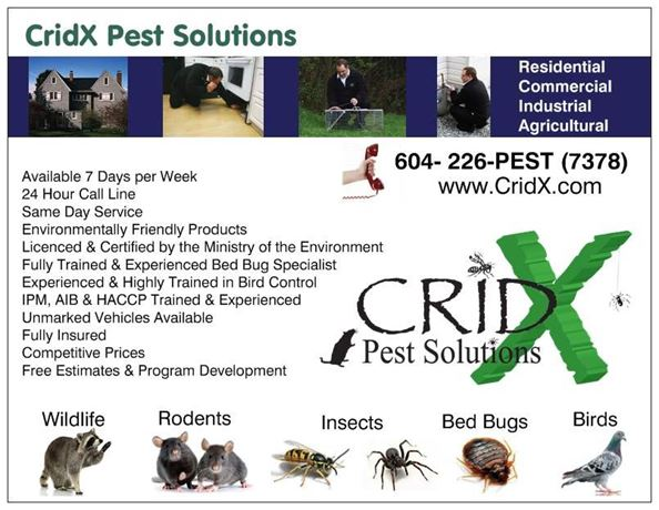This Note Card highlights some important points about CridX Pest Solutions, such as our 24-7 availability so we are there when YOU need us!